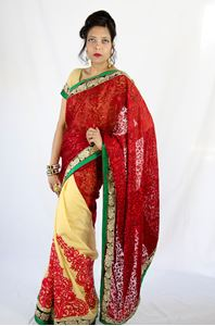 Picture of Beige Half-Half Saree S033
